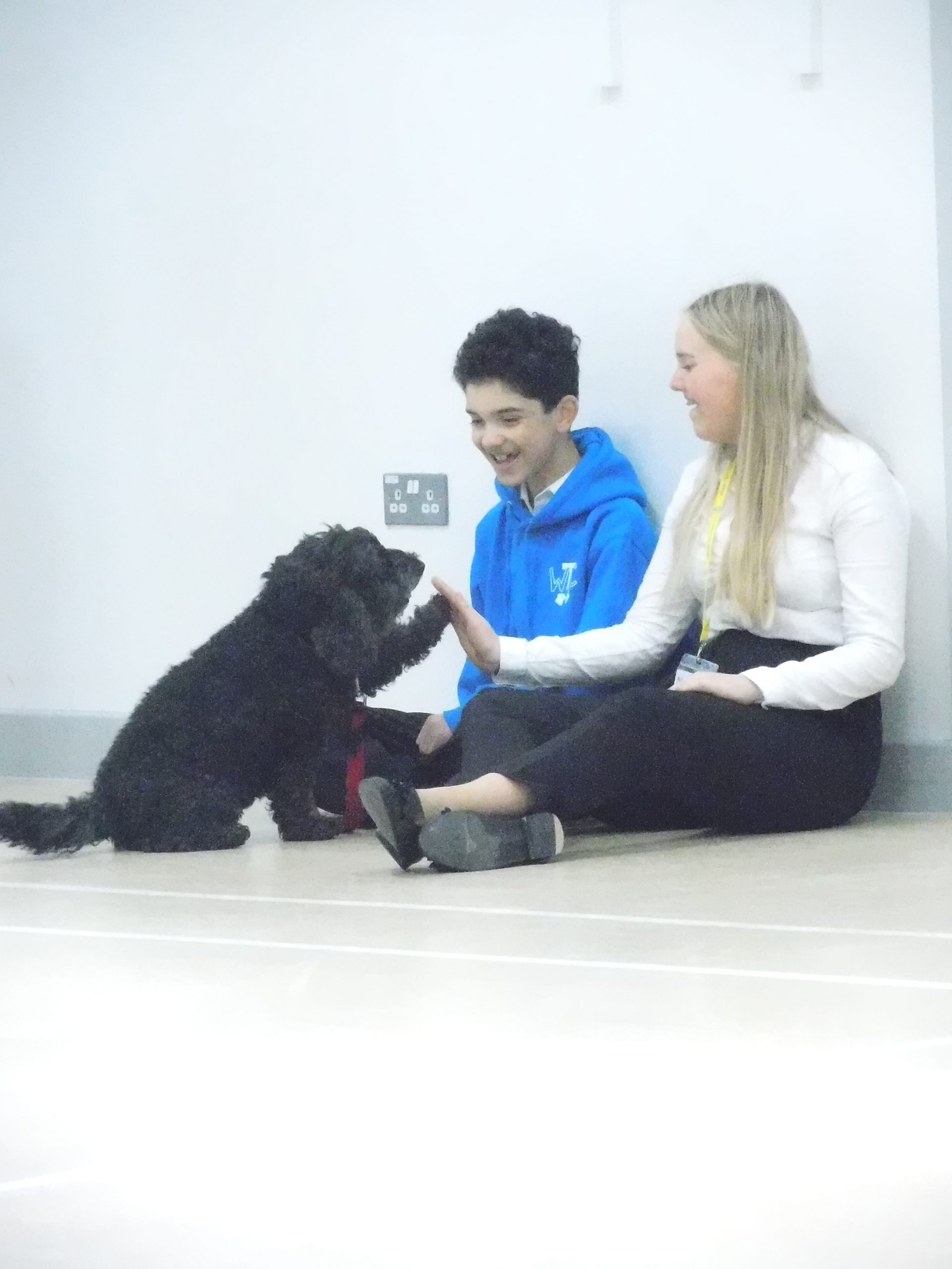 Waggy Tails Club gets professional dog trainer